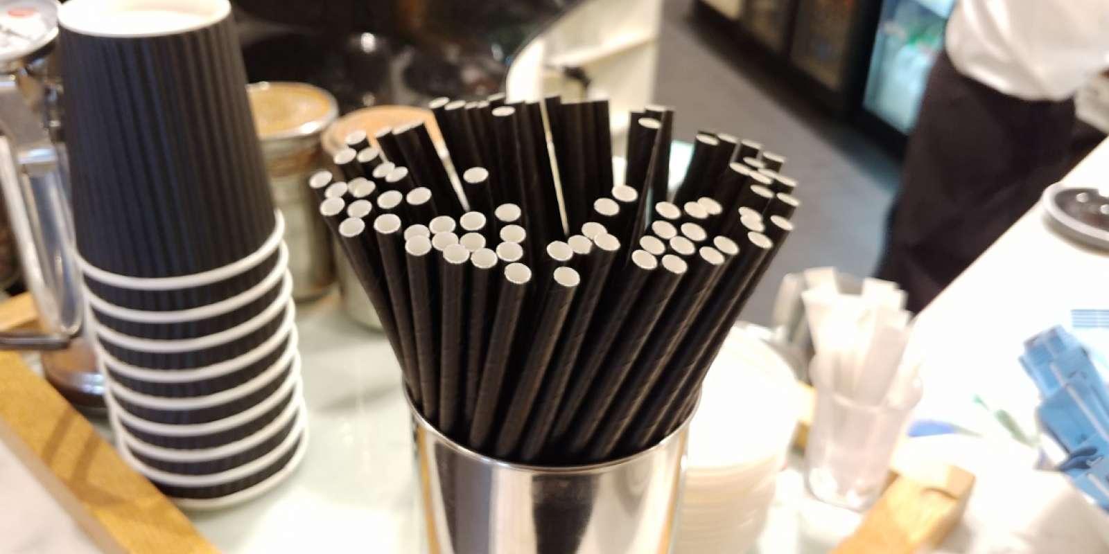 Sofitel Queenstown Paper straw