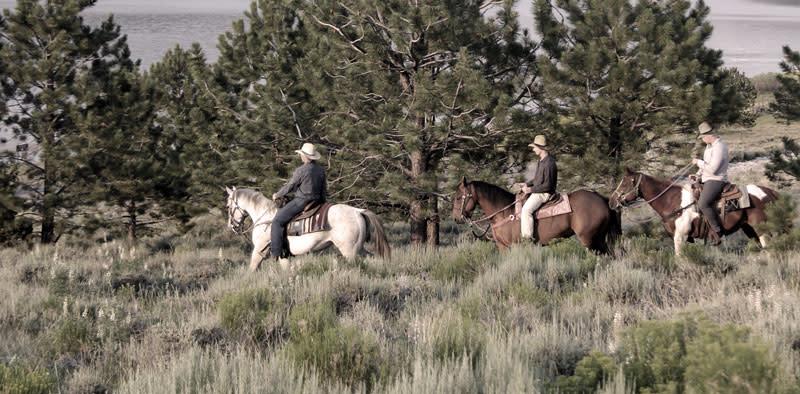 Utah Outlaws