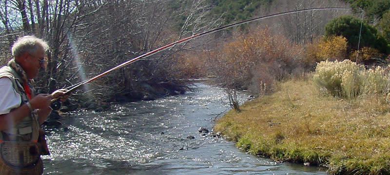 Stream fishing in southern Utah