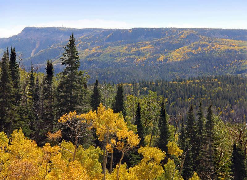 Boulder Mountain in the fall season.
