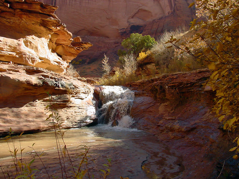 Coyote Gulch - Grand Staircase