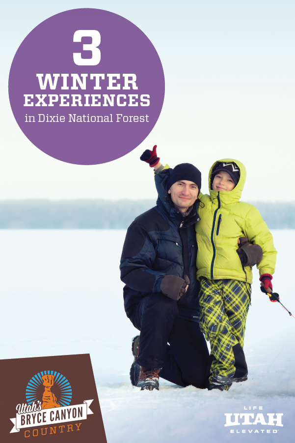 Come to Utah and see Dixie National Forest — a beautiful location full of winter experiences memories in the making.