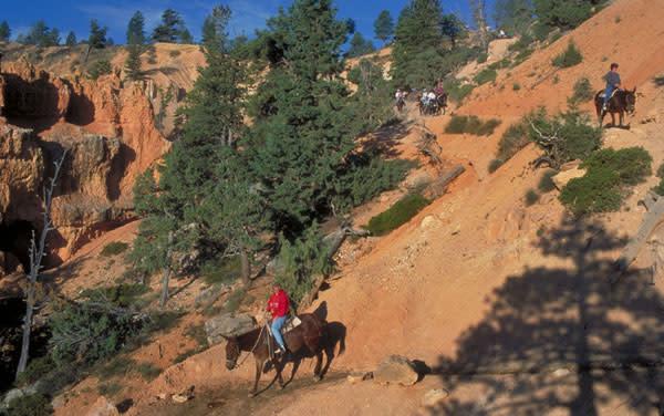 Riding horseback - Bryce Canyon