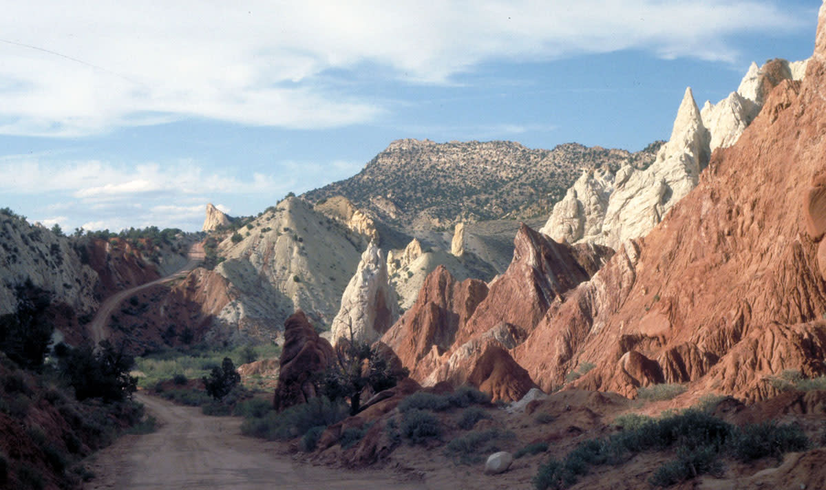 Cottonwood Canyon - Bryce Canyon Area