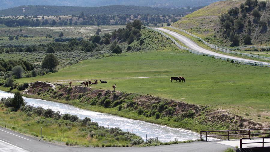 Utah Highway 89