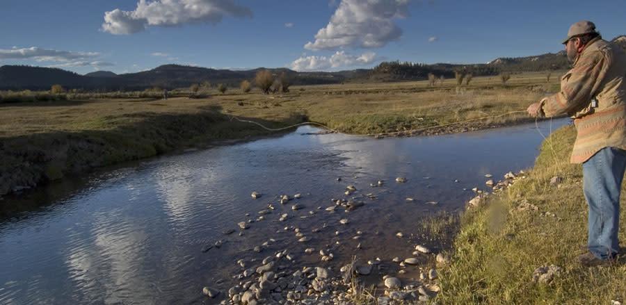 Utah stream fishing