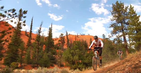 Utah Guided Mountain Biking Tours