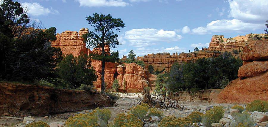 Bryce Canyon Utah ATV Trails