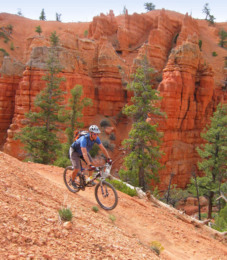 Mountain Biking on the Thunder Mountain Trail