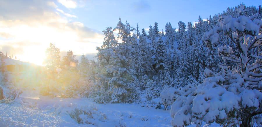 Utah Winter Wonderland