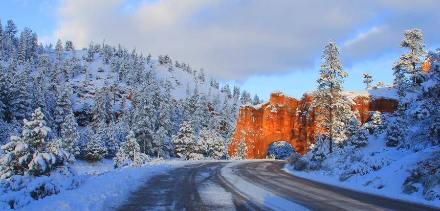 Bryce Canyon like hoodoos in Red Canyon