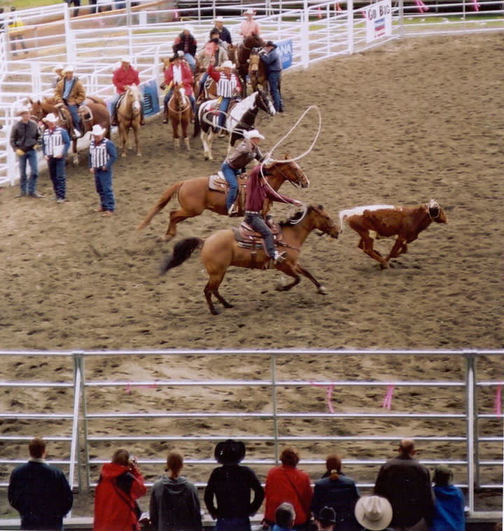 panguitch-utah-rodeo