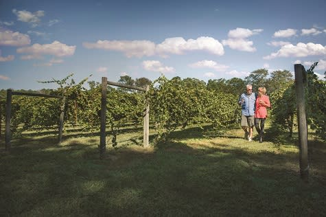 Be sure to visit a winery or vineyard during your couples trip to North Myrtle Beach.