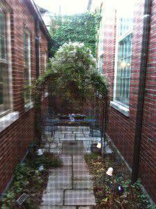 The Secret Garden - little garden area perfect for photos!