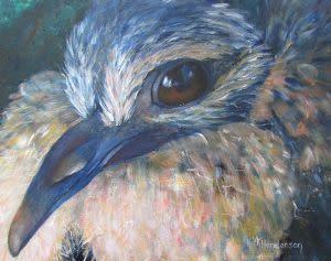 TAF Exhibition: Young Dove by Venita Henderson