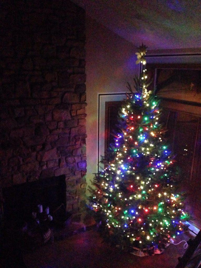 jo-christmas-tree-3