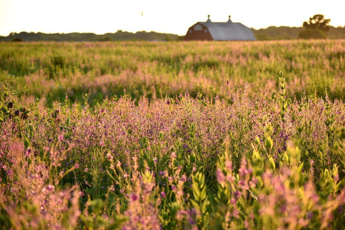 Farm at Prophetstown