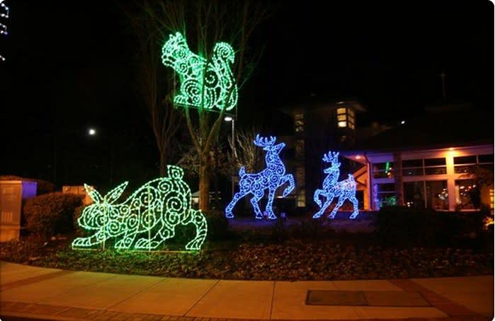 Gatlinburg, TN Christmas