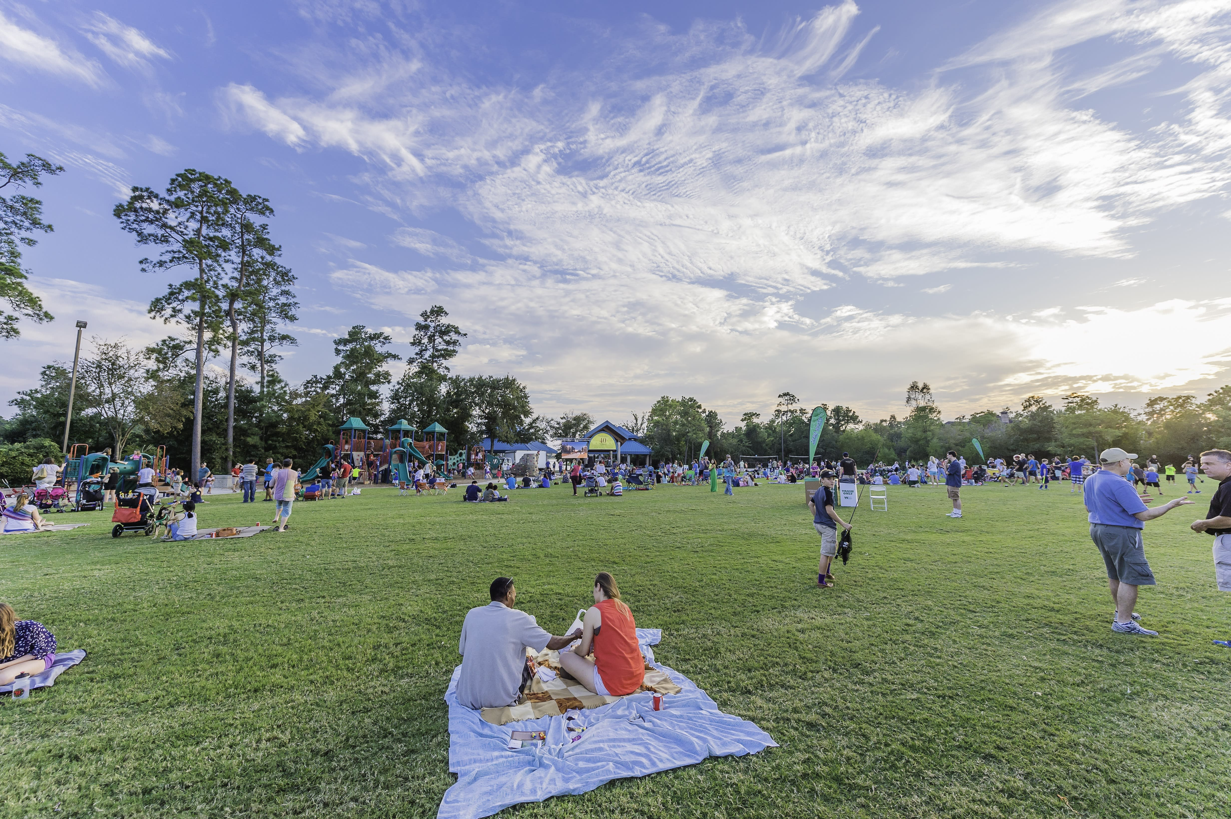 Family picnicking at Northshore Park in The Woodlands, TX