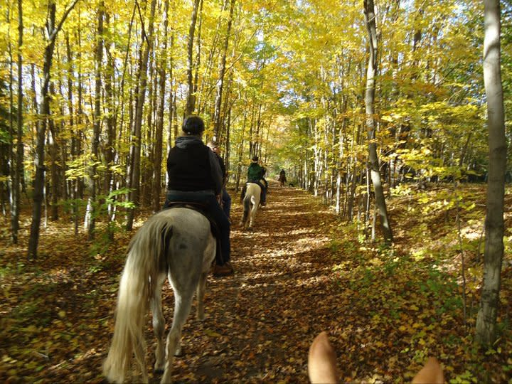Painted Bar Stables Trail Ride2