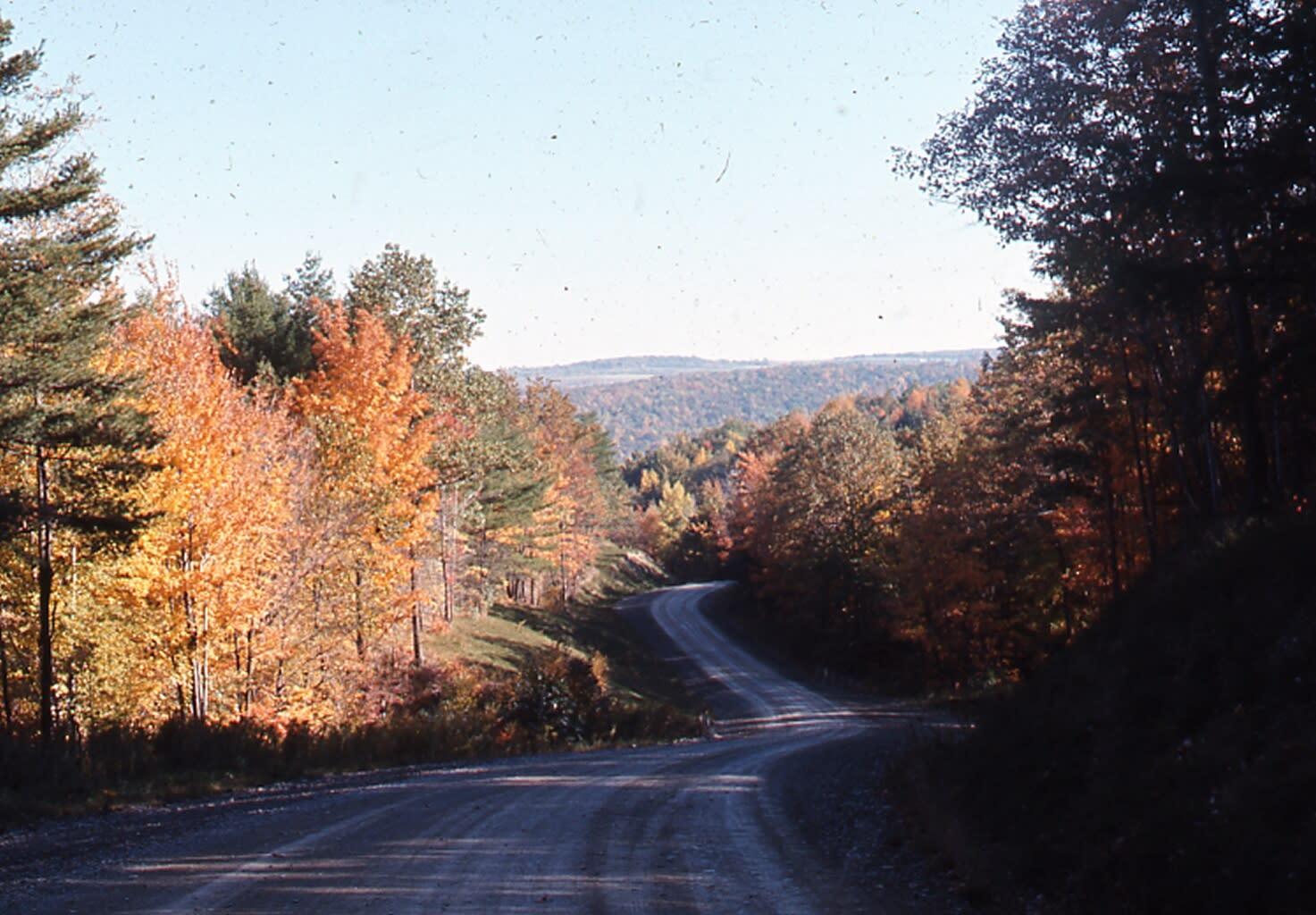 Country Road- kari lusk