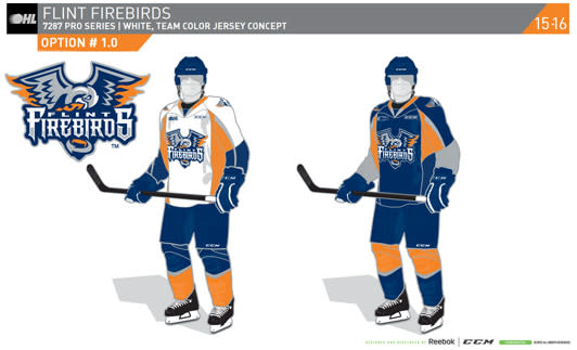 Flint Firebirds logo