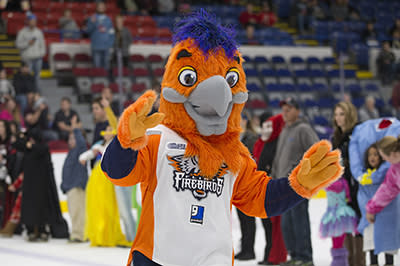 Support YouthQuest by Saving at Seat at the March 2nd Flint Firebirds Game