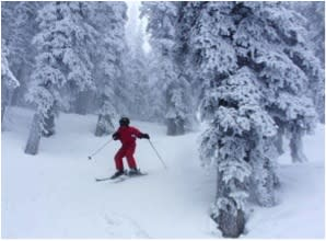 Skiing in a winter wonderland means doing it in Santa Fe! (Photo credit: Ski Santa Fe)
