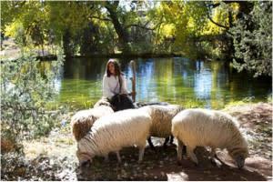 Maria had a little lamb – or two, or four. (Photo credit: El Rancho de las Golondrinas)