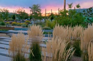 Let your pup take you to the Railyard Park for a sunset stroll. (Photo Credit: Santa Fe Sage Inn)