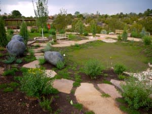 Blue skies and native plants tell the tale of Santa Fe's botanical history. (Photo Credit: Santa Fe Botanical Garden)