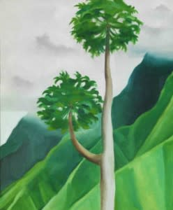 """Georgia O'Keeffe always had an eye for beautiful trees. """"Papaya Tree, Oil on Canvas,"""" collection of the Honolulu Museum of Art; Gift of the Georgia O'Keeffe Foundation. (Photo courtesy of Georgia O'Keeffe Museum)"""