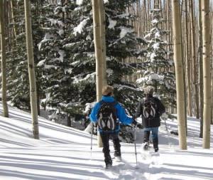 Santa Fe, New Mexico, Winter, Sports, Mountain