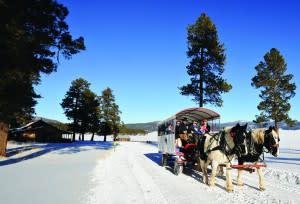 winter, outdoors, national preserve, santa fe, new mexico
