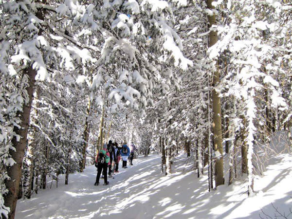 Walking in a Winter Wonderland is the tune you'll be singing when you take a snowshoe hike with Outspire. (Photo Credit: Outspire Hiking and Snowshoeing)