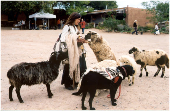 You can make friends with some frisky four-legs at El Rancho de las Golondrinas Spring Festival. (Photo Credit: El Rancho de las Golondrinas)