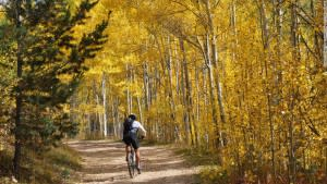 October arrives in full golden glory as aspen trees display their glowing fall colors, usually through the middle of the month. Courtesy of CNN)