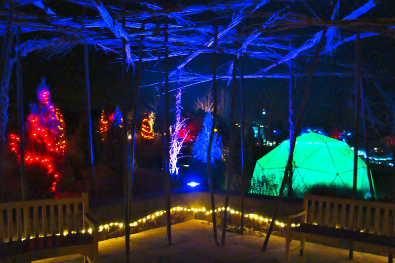 """Immerse yourself in the """"glow"""" of lights at the Santa Fe Botanical Garden Photo courtesy of Santa Fe Botanical Garden"""