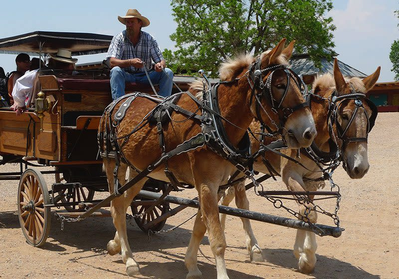 Explore life on the frontier at the Summer Festival and Wild West Adventures event. (Photo courtesy of Rancho de las Golondrinas)