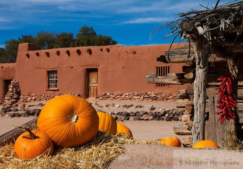Pumpkins and chile are part of the bounty at the Harvest Festival (Photo courtesy of Bill Todjno Photography)