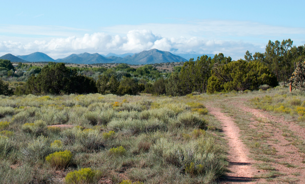 The La Cieneguilla site is also of intrest to those tracing the route of El Camino de Tierra Adentro, as the ancient road passed along here as well. (Photo courtesy of Santa Fe County)