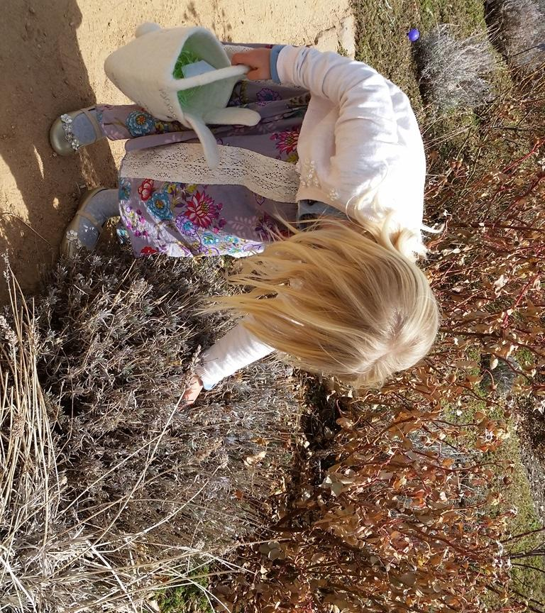 Let the Easter egg hunt begin! (Photo courtesy of Santa Fe Botanical Garden)