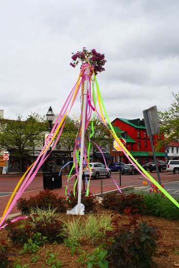 The Power of Flowers Returns to Annapolis
