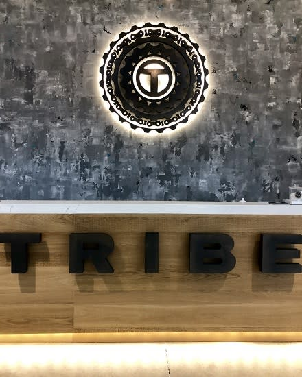 Tribe Cycle