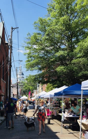 Earth Day on Maryland Avenue