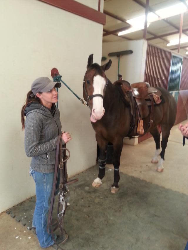 mr__ed_talking_horse__photo_by_sharon_lynn_w640