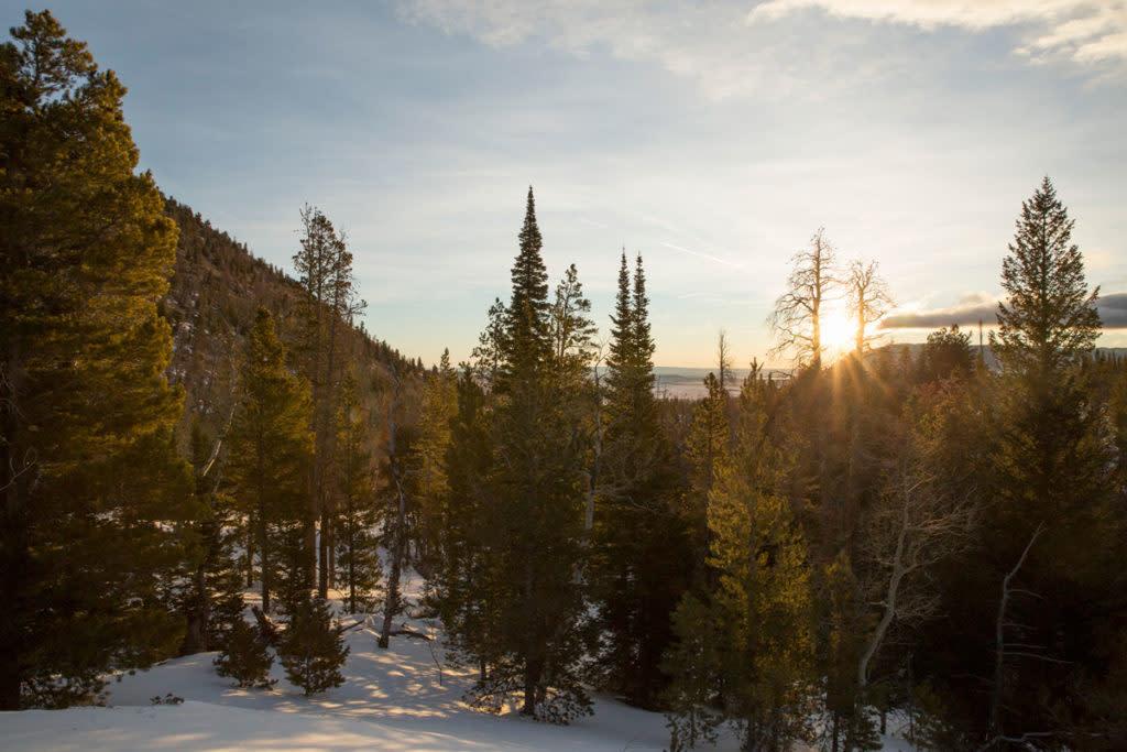 scenic snowshoeing wyoming