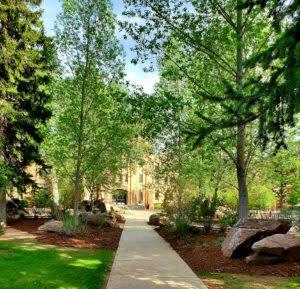 University of Wyoming Walking Tour