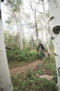 Laramie area mountain biking aspens Happy Jack Trails