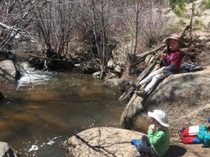 Wyoming Nature Picnic on Crow Creek Trail at Curt Gowdy State Park